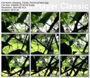3cad4d106657014 Skodeng Pasangan Bercumbu (Taman Puchong Tekali)