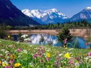 Beautiful places in Germany 56cb9b108270902