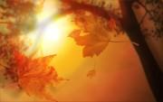 Autumn wallpapers C6759b108976868