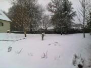 The Snow 2010 79788a110168464